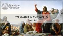 Strangers in the World